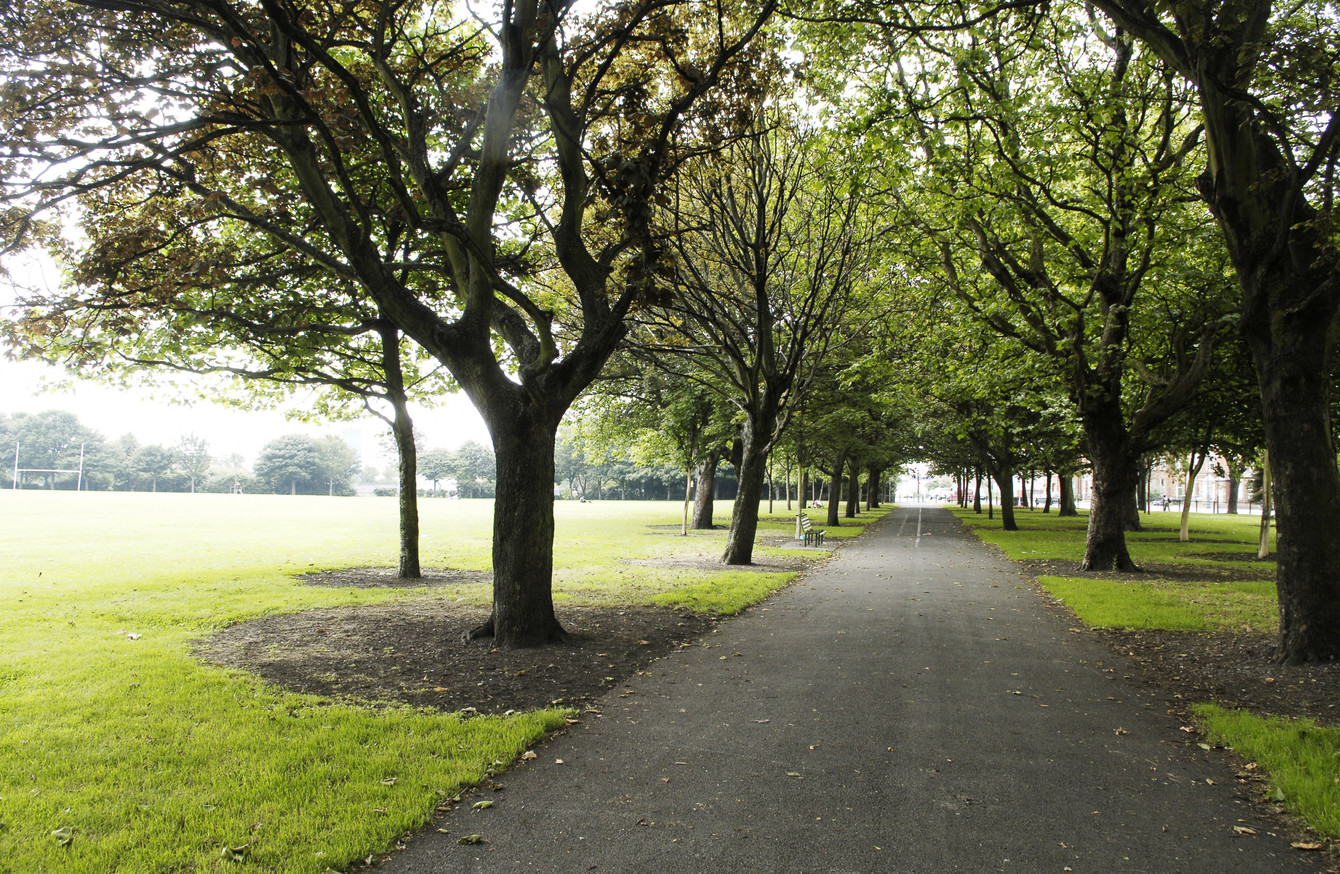 Clontarf to City Centre Cycle Route - Proposed Tree Removal at ...
